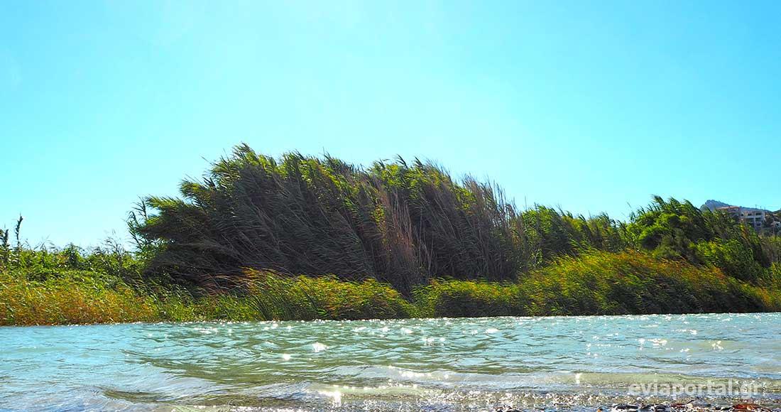 Ο ποταμός Μανικιάτης εκβάλει στην παραλία του Αγίου Γεωργίου Οξυλίθου
