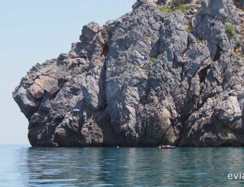 Παραλία Κεφάλα Άγιος Μερκούριος Μουρτερής, Αυλωνάρι Εύβοιας