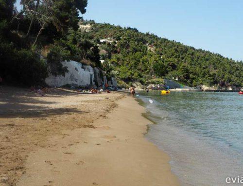 Παραλία Σουτσίνι στην Κύμη Ευβοίας