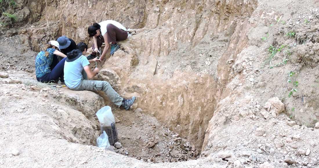 Η ανασκαφική ομάδα στο απολιθωμένο δάσος της Κερασιάς στην Εύβοια