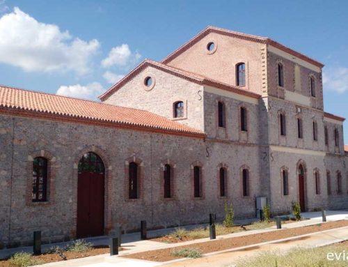 Δράση για την Διεθνή ημέρα μουσείων στα Αρχαιολογικά Μουσεία Χαλκίδας και Καρύστου