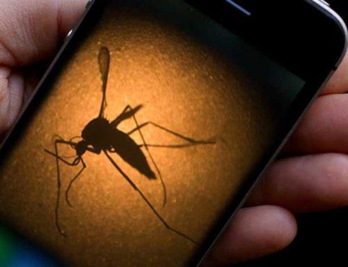 Έκτακτοι ψεκασμοί για την καταπολέμηση των κουνουπιών στις πληγείσες περιοχές