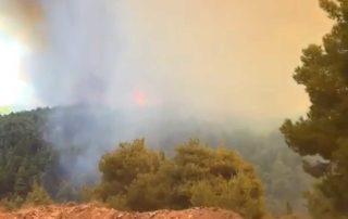 Μεγάλη φωτιά στα Ψαχνά Εύβοιας