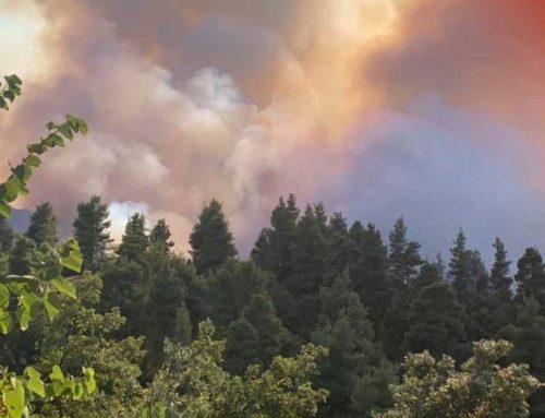 Σε ύφεση η πυρκαγιά στην Καστανιώτισσα Ιστιαίας