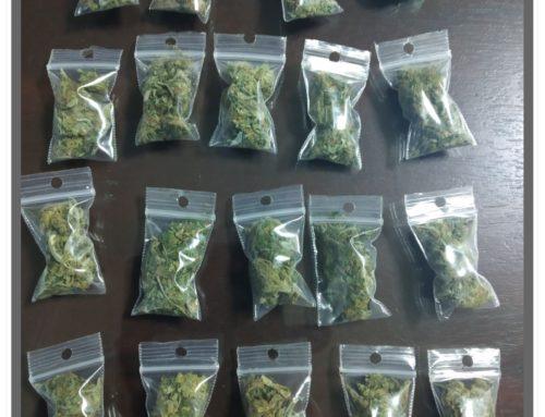 Συνελήφθη αλλοδαπός στη Νέα Αρτάκη Ευβοίας για κατοχή ναρκωτικών