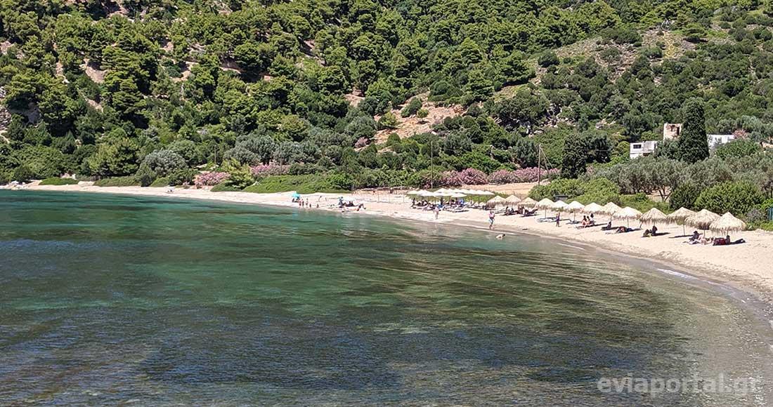 Η παραλία Πεύκος διαθέτει οργανωμένο τμήμα με ομπρέλες και ξαπλώστρες