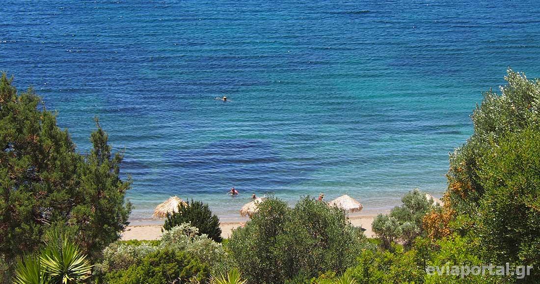 Το πράσινο συναντά το γαλάζιο στην παραλία του Πεύκου στην Σκύρο