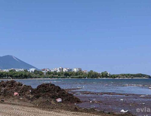 Καθαρίζεται η παραλία της Λιανής Άμμου στην Χαλκίδα