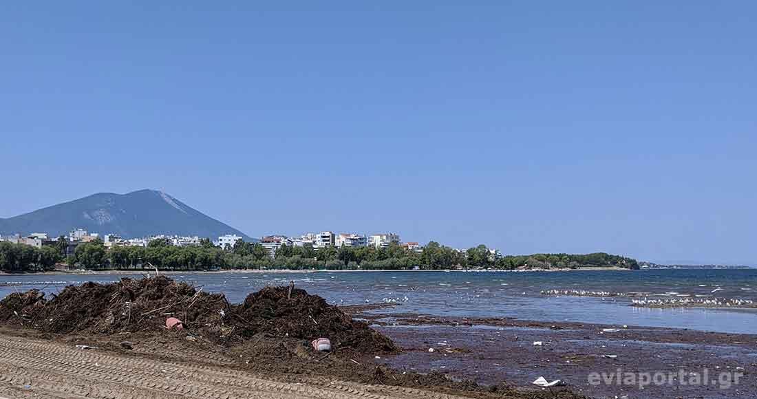 Γέμισε φερτά υλικά η παραλία Λιανή Άμμος στην Χαλκίδα
