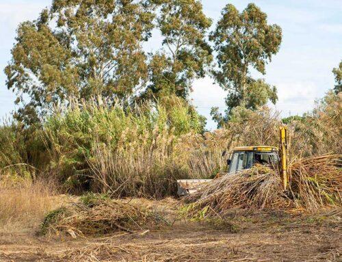 Ο Όμιλος ΗΡΑΚΛΗΣ προχωρά στην ασφαλή απομάκρυνση αγροτικών υπολειμμάτων στο Δήμο Κύμης-Αλιβερίου
