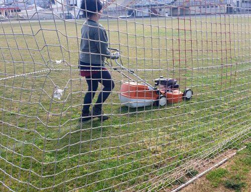 Εργασίες εξωραϊσμού και αναβάθμισης των εγκαταστάσεων του Γηπέδου Ποδοσφαίρου Ν. Αρτάκης