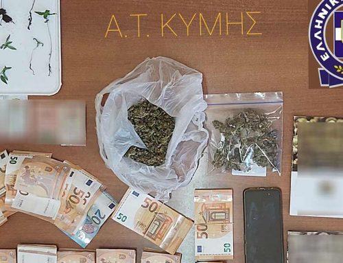 Συνελήφθη ένα άτομο στην Κύμη, για καλλιέργεια και διακίνηση ναρκωτικών