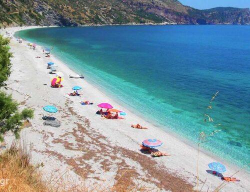 Παραλία Κορασίδα, Αχλαδερής στην Εύβοια